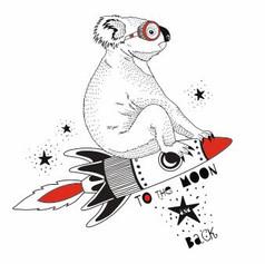 koala with rocket.JPG