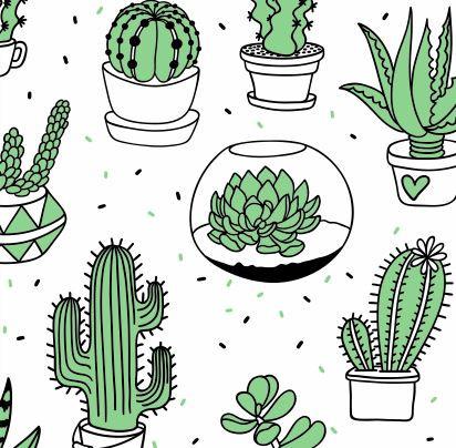 cactus life.JPG