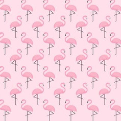 amazing flamingos.JPG