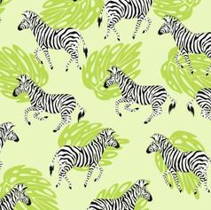 running zebra.JPG