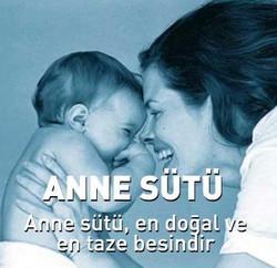 anne-sutu2