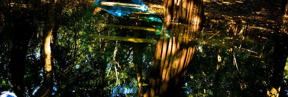 Amazônia. Impressão 30x40cm. Papel Hahnemühle. REF: 5358