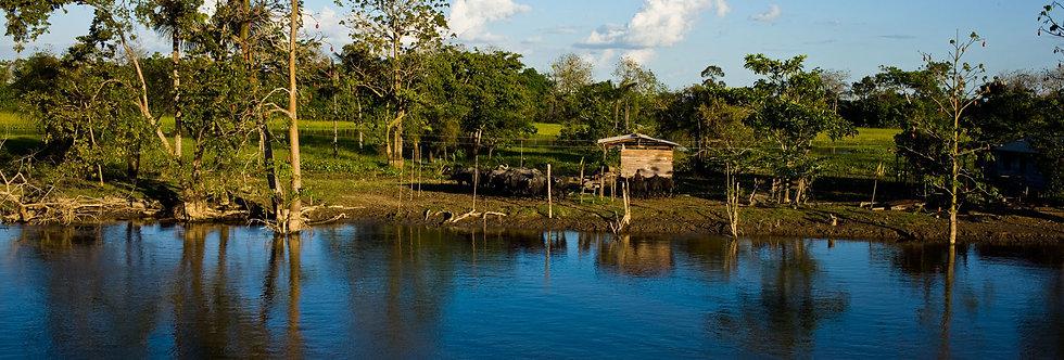 Amazônia. Impressão 30x40cm. Papel Hahnemühle. REF: 5034