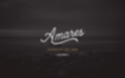 AMARES WEB.png