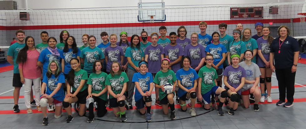 Volleyball Photo.png