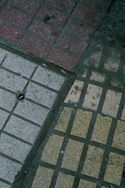 serie_02_-_006_-_escaneado_fotosíntesis