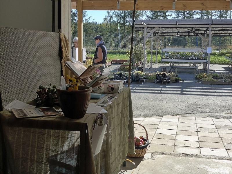 Vårt bord och växtbord
