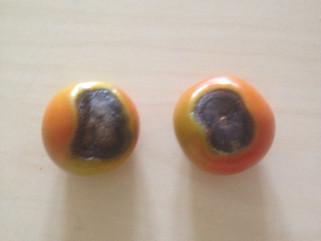 Felet med tomaterna