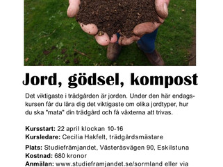 Cirkel om jord