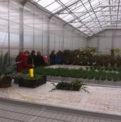 Besök i växthuset