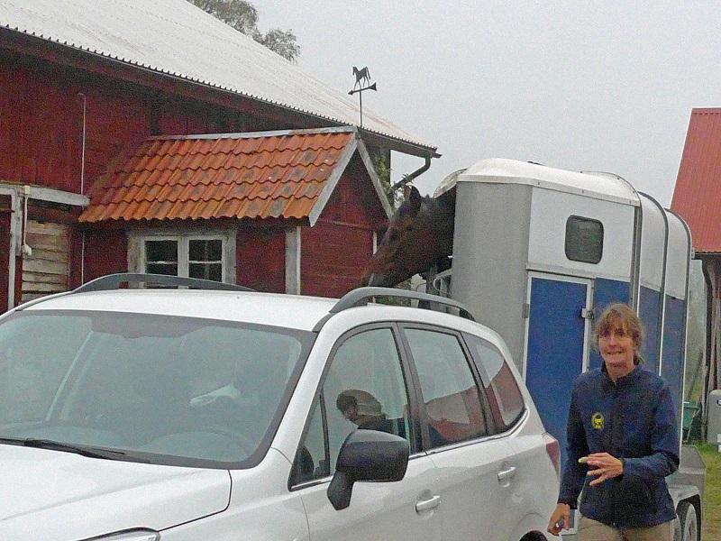Rogers fru och häst i vagnen