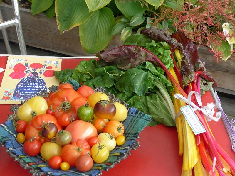 Tomater, mangold