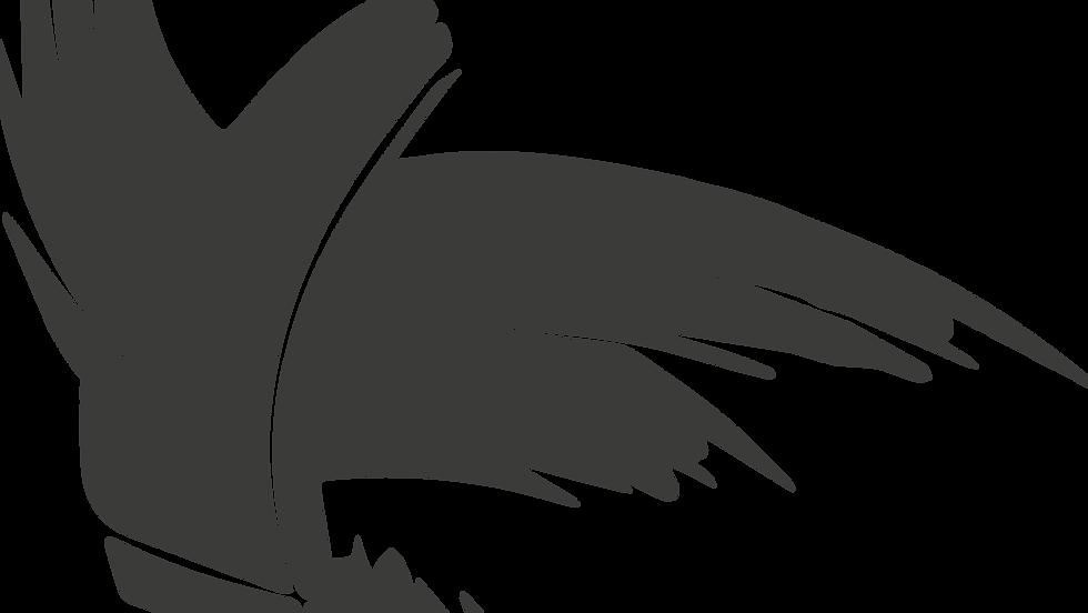 птица.png