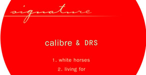 Calibre & DRS'White Horses' / 'Living For'(Signature Recordings)