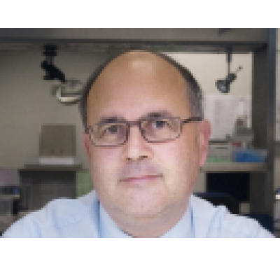 Dr. Patrick Pauwels