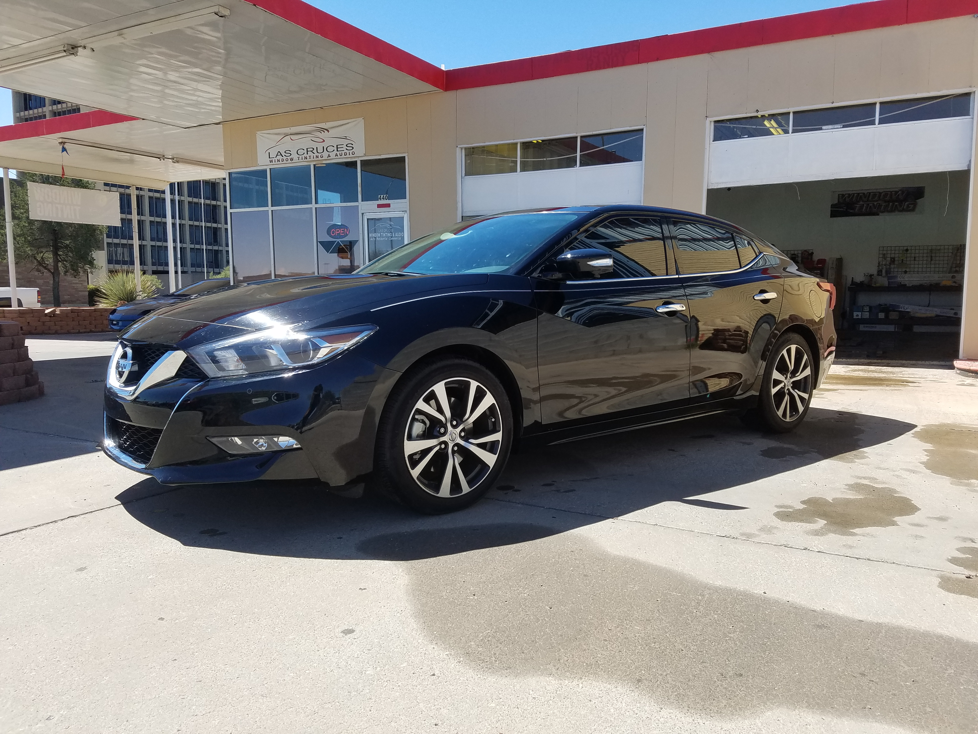 Services   Las Cruces Window Tinting