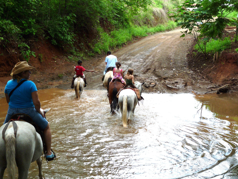 Horseback riding | Rincon De La Viej