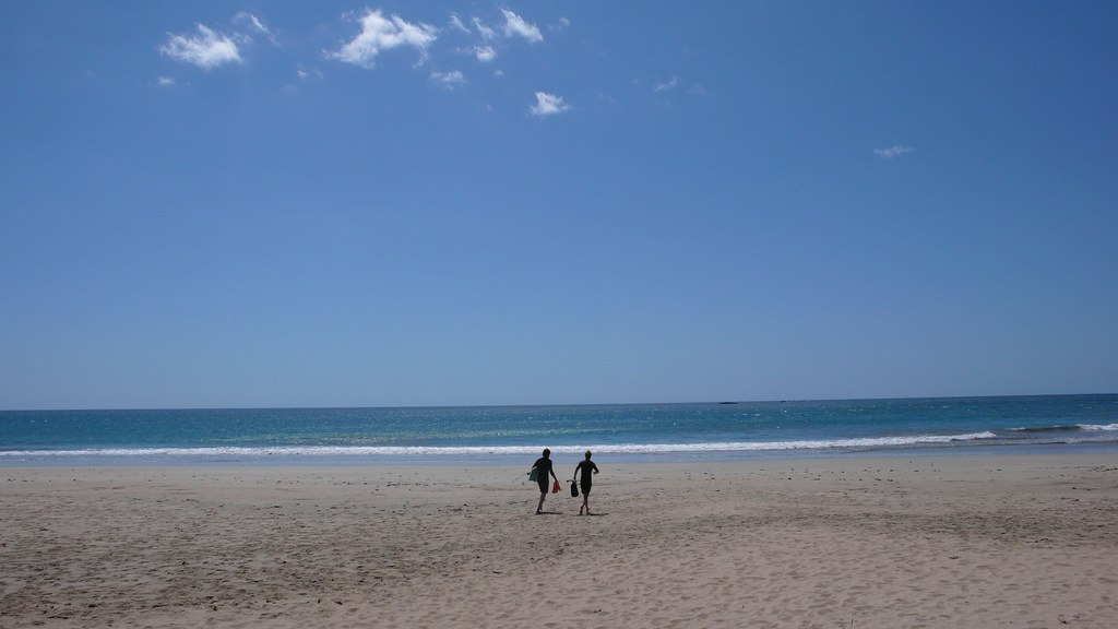 Sea Shelling | Playa Grande