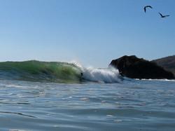 Boogie Board | Playa Grande