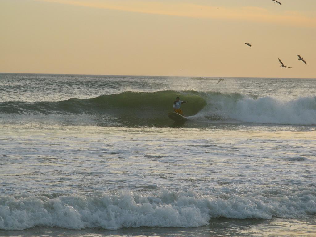 Surfing | Costa Rica