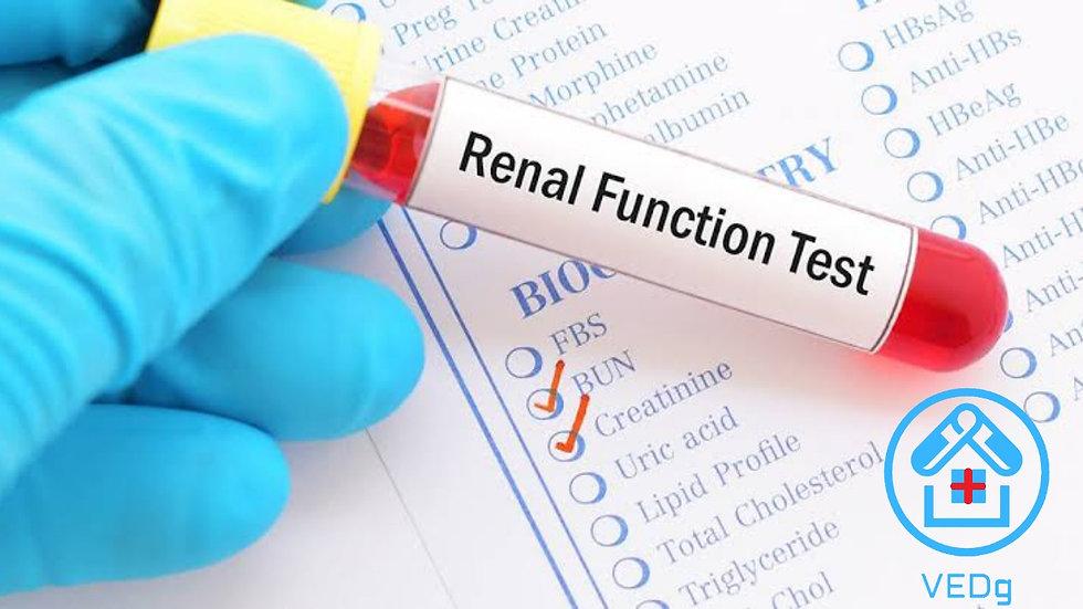 Kidney Function Test ( KFT )