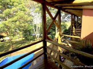 Arquitetura tropical em madeira