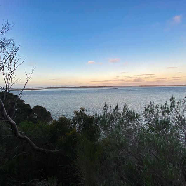 Pelican Lagoon View