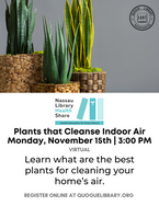 Plants that Cleanse Indoor Air