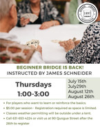 Beginner Bridge