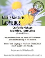 G&G Crafts Ladybugs