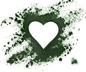 Spirulina powder - algae, nutritional supplement, shape heart surface top view isolated on