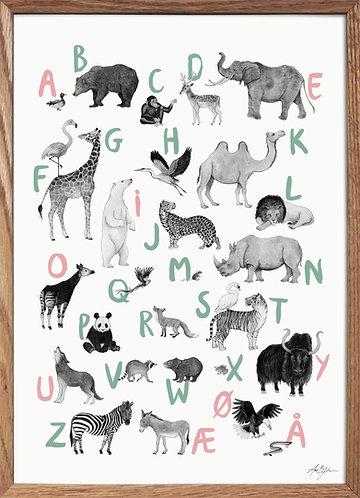 ABC-plakat - sort/hvid med rosa/grønne bogstaver
