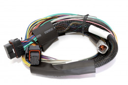 Elite 2000 Basic Unviersal Wire-in Harness