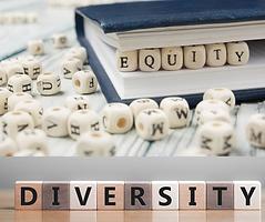 Diversity Pic.png