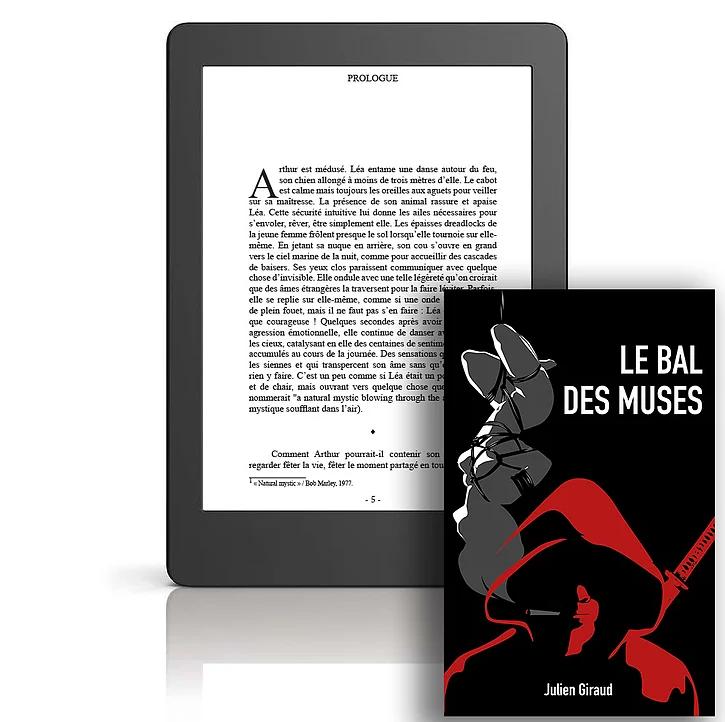 roman, polar, numérique, thriller, policier, enquête, Julien Giraud