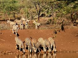 Namibia8