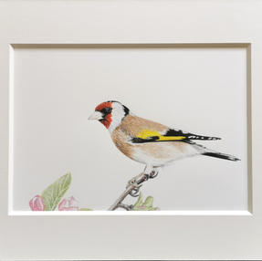 Goldfinch – by Sue £75