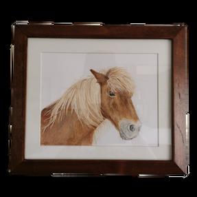Shetland Pony – by Sue £105 Unframed £75
