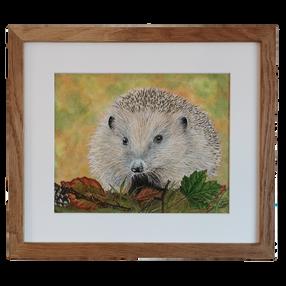 Humphrey Hedgehog - by Sue £130 Unframed £85