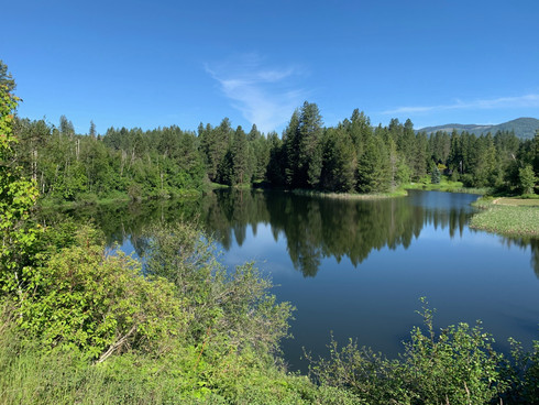 Beautiful picture of a pond on the Dover to Sandpoint bike trail.