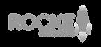 RocketFishDigital_0120_Logo-01_edited_ed