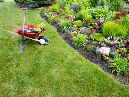 Be the Talk of the Neighborhood: Top Gardening Trends for 2017