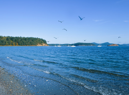 Get Away with a Fall Visit to Lopez Island
