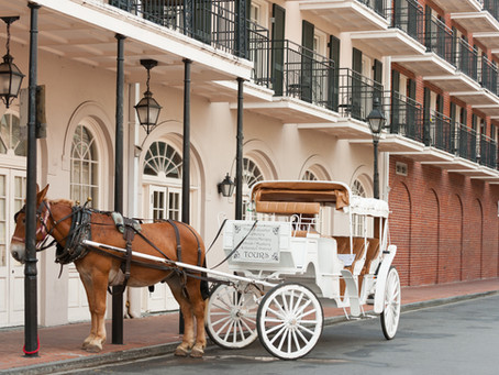 Visit New Orleans like a Local