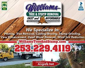 Gig Harbor Business williams Tree and Stump Removal
