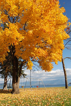 Fall in Sandpoint