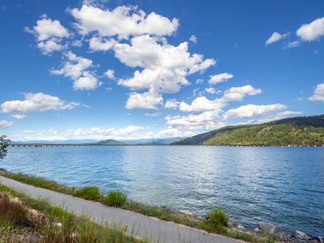 Scenic Swim: Long Bridge Swim back again