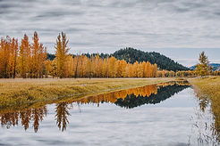 Fall in Bonners.jpg