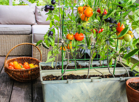 From Victory Gardens to Garage Greatness