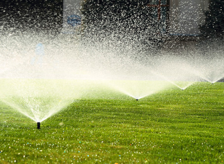 Proper Irrigation Practices
